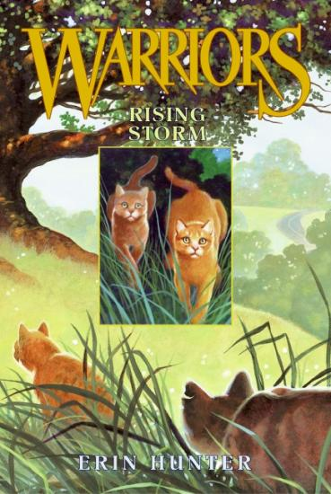 Tome 4 : Rising Storm