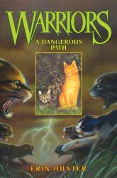 a dangerous path.jpg